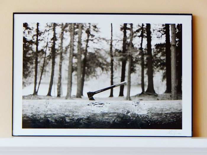 Tree No People Nature Framed Photograph Axe Throwing Photo In A Frame Interior Decorating