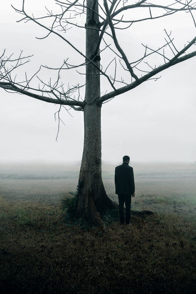 Magnus by her side. Photography Landscape Portrait Tree Field Surreal Create Fine Art Photography Explore Discover  Eyeemphotography EyeEmGalley Mist Fog Foggy Horizon Morning Weather Sky Cold Boy Lone Woods Forest Lost In The Landscape
