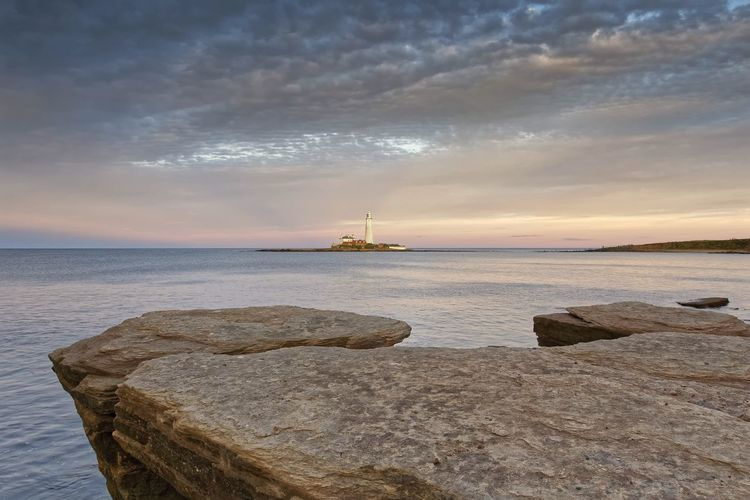 St Marys Lighthouse Water Sea Sky Beauty In Nature Beach Cloud - Sky Scenics - Nature Solid Land Horizon Tranquility Rock Tranquil Scene Horizon Over Water Nature Sunset Rock - Object Idyllic Non-urban Scene Outdoors