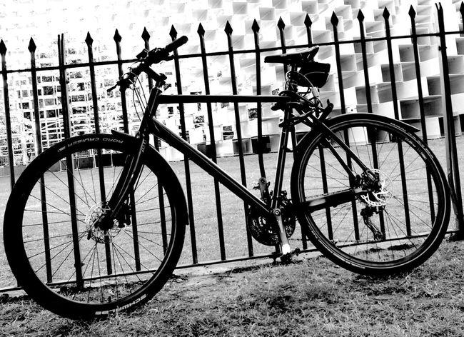 Cycling Fahrrad Fahrräder Licht Und Schatten Monochrome Hyde Park Bicycle Arty