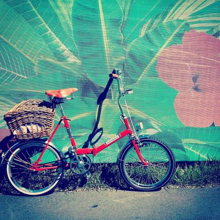 Pastel Power Vintage Bicycle Vintage Bike Bicycle Mint Green Pink And Green Hippie Colorful Basket Hipster Shopping Pavement City EyeEm Best Shots Hibiscus Fern Leaves Pink Flower Folding Bike