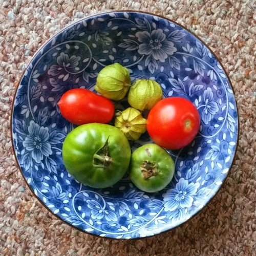 Freshness Food TomatoesMulti Colored High Angle View Blue Bowl