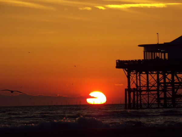 Silhouette Of A Pier Silouette & Sky Silhouette Red Sky Sunset Over The Sea Seascape Sunset Sun Blackpool Central Pier Central Pier Sea SEAGULL IN FLIGHT Seagull Silhouette Of A Seagull The Great Outdoors - 2016 EyeEm Awards 43 Golden Moments
