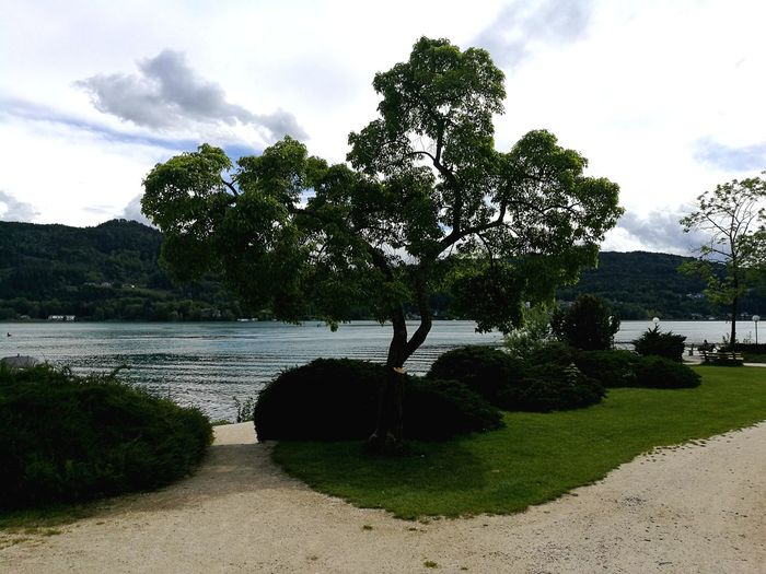Wörthersee Cloud - Sky Tree Outdoors Water Sky Day Nature No People Beauty In Nature Lake Lake View Lakeshore Lakeview Lakescape