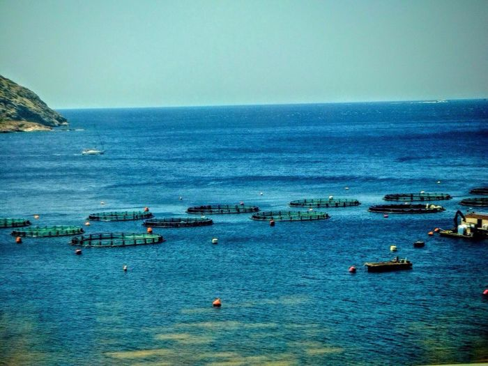 Scenic view of fish farm pens in blue sea against clear sky