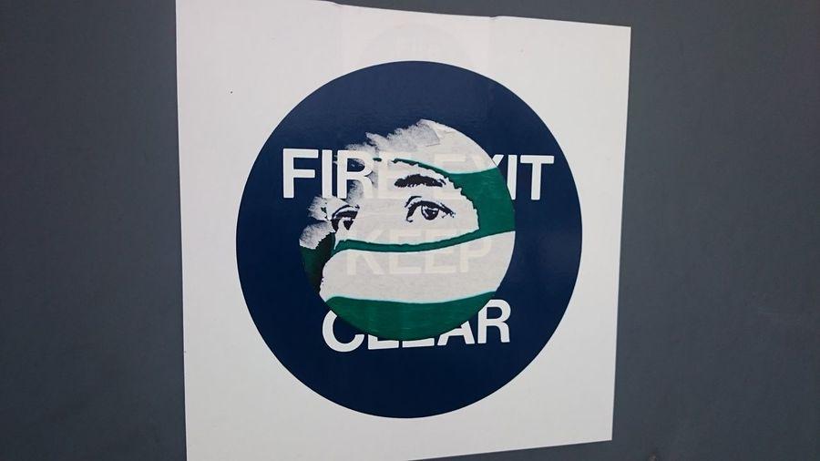 Viva Activism