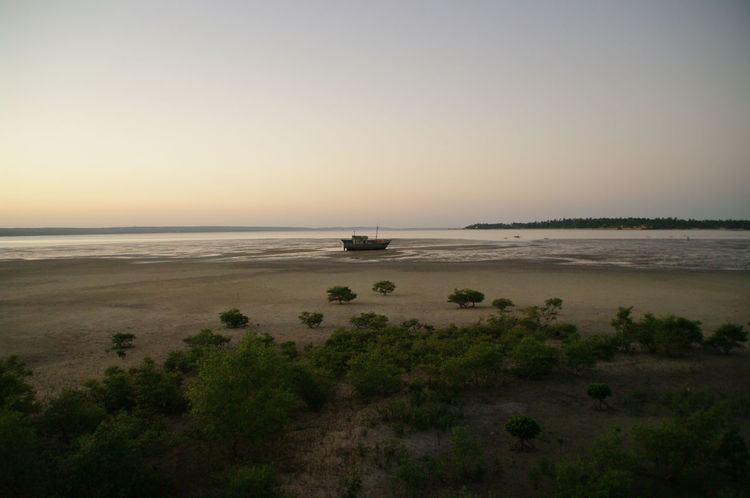 Beach Beauty In Nature Clear Sky Day Horizon Over Water Inhambane Landscape Mozambique Nature Nautical Vessel No People Outdoors Sand Scenics Sea Sky Sunset Tranquil Scene Tranquility Transportation Travel Destinations Tree Water Wave