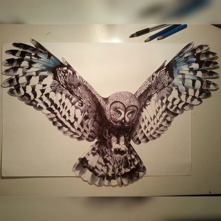Drawing Owl Art Draw Drawings Bicpen Art, Drawing, Creativity Gufo Civetta manca poco :)