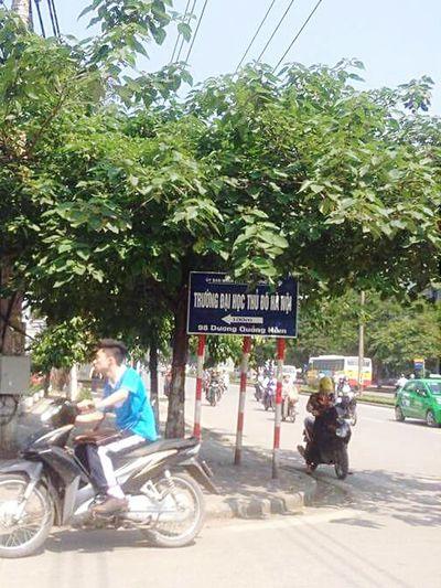 Day 260: cảm thấy kì cục khi sinh viên Đại học Hà Nội lần đầu nhìn thấy trường Đại học Thủ đô Hà Nội :|
