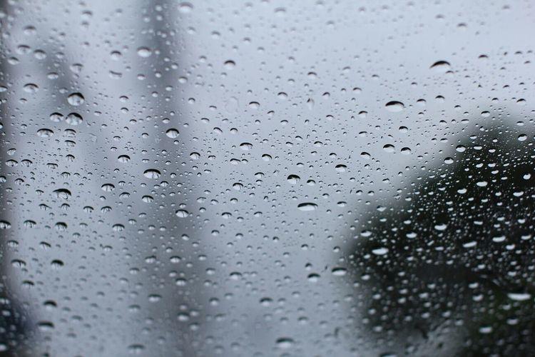 水滴 しずく 雨 風景