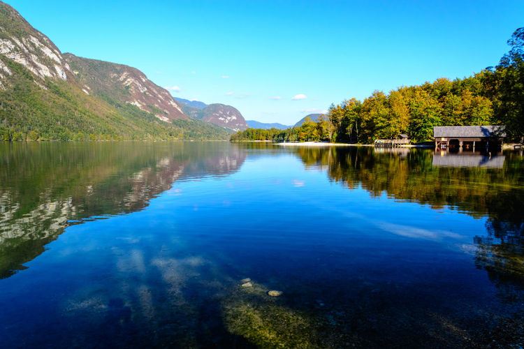 Nature Sky Day Bohinjsko Jezero Water Mountain Scenics - Nature Reflection Lake Beauty In Nature Tranquil Scene Tranquility Tree Plant Blue No People Waterfront Non-urban Scene Idyllic Outdoors