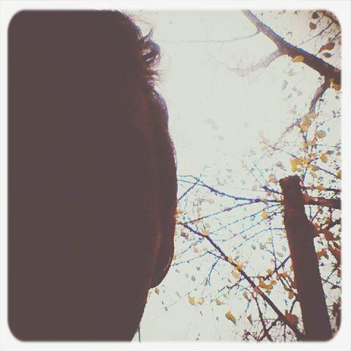 осень Осень 🍁🍂 сентябрь горит Октябрь плачет