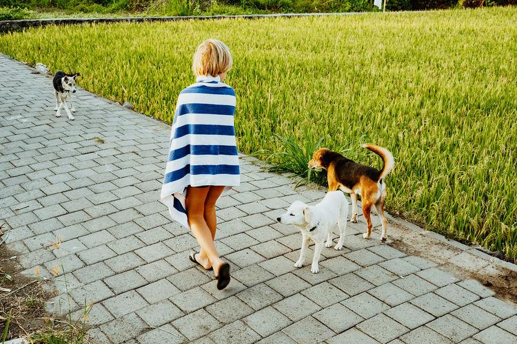 Rear view of boy walking by dogs on footpath