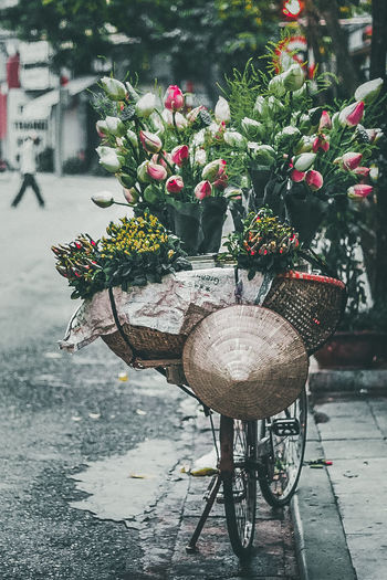 Flower for sale on bicycle