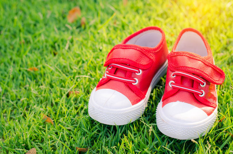 Close-up of red shoes on grassy field