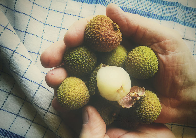 Cropped Hands Holding Lychees