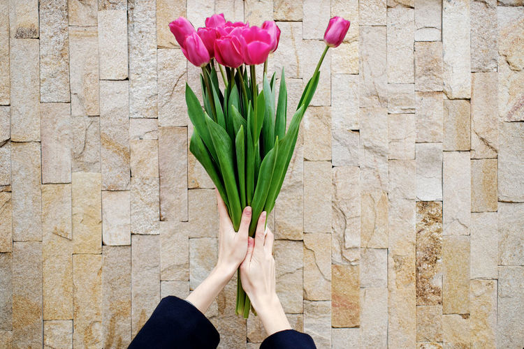 Close-up of hand holding red tulip