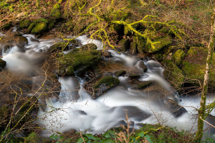 High angle view of the river flowing through the woods at watersmeet in devon