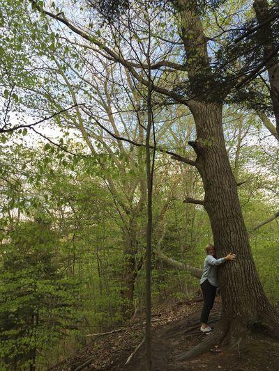 Tree Huggers 👍🏽
