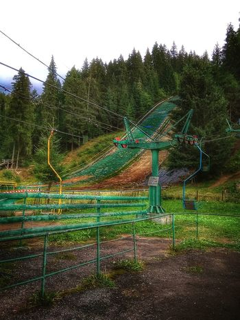 Green Color No People Tree Day Ukraine 💙💛 Outdoors Phone Photo Cloud - Sky Cableway The Week On EyeEm