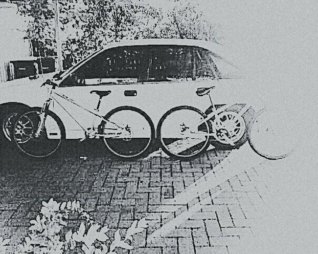 Bikes Celebrate