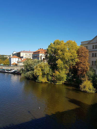 Trees and buildings by river against clear blue sky