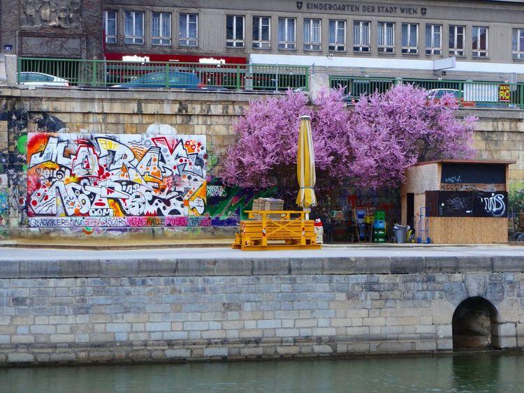 Urban Spring Fever Wien Vienna Graffiti Streamzoofamily Streamzoo Österreich Austria River Cityscapes Danube Donau Spring Frühling Graffiti Art Urban Urban Landscape Urban Art Urban Photography EyeEm City Shots EyeEm Best Shots Eyeemphotography