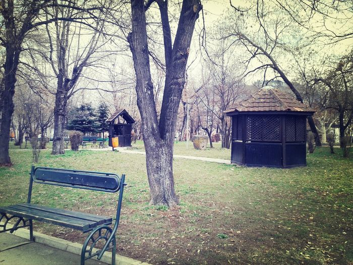 Walking In The Park Taking Photos The Spring Is Coming Hanging Out A day with my friend. ♡♥♡♥