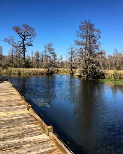 Optoutside South Carolina Santee Beautiful Nature Water Outdoors Enjoying Life Sunshine Relaxing Taking Photos Check This Out Water_collection Adventure