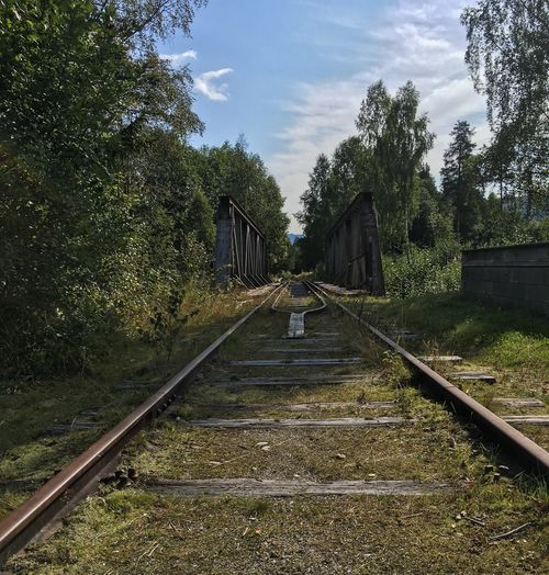 Railroad Track Rail Transportation Outdoors The Way Forward Norway Veggli