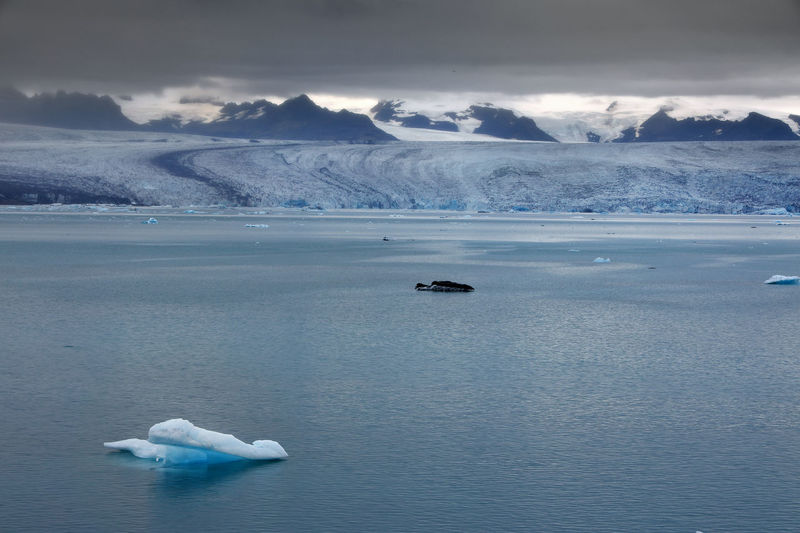 Scenic view of iceberg in lagoon against sky
