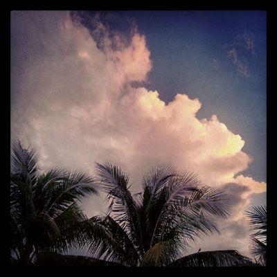 Thunderstorm inbound...Woot!