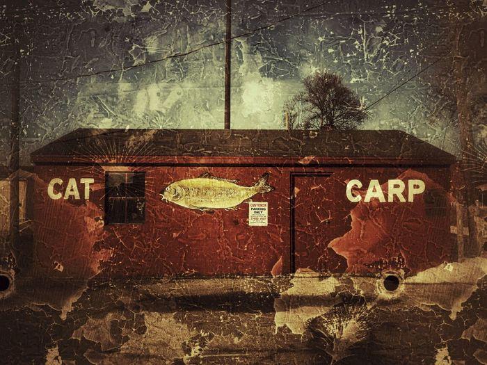 FISHY BUSINESS ~ Saint Joseph, Missouri Dreamscapes & Memories Roadside America Urban Landscape History Of Fish