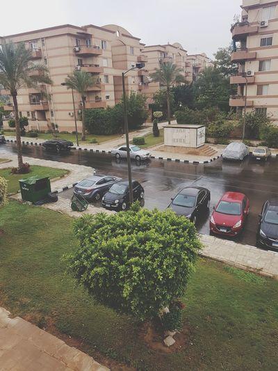 Cairo Rain No