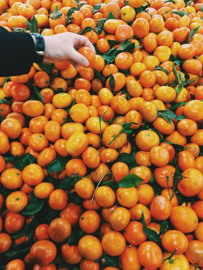 Cropped hand of person examining orange fruit at market