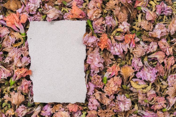 Paper Flower No