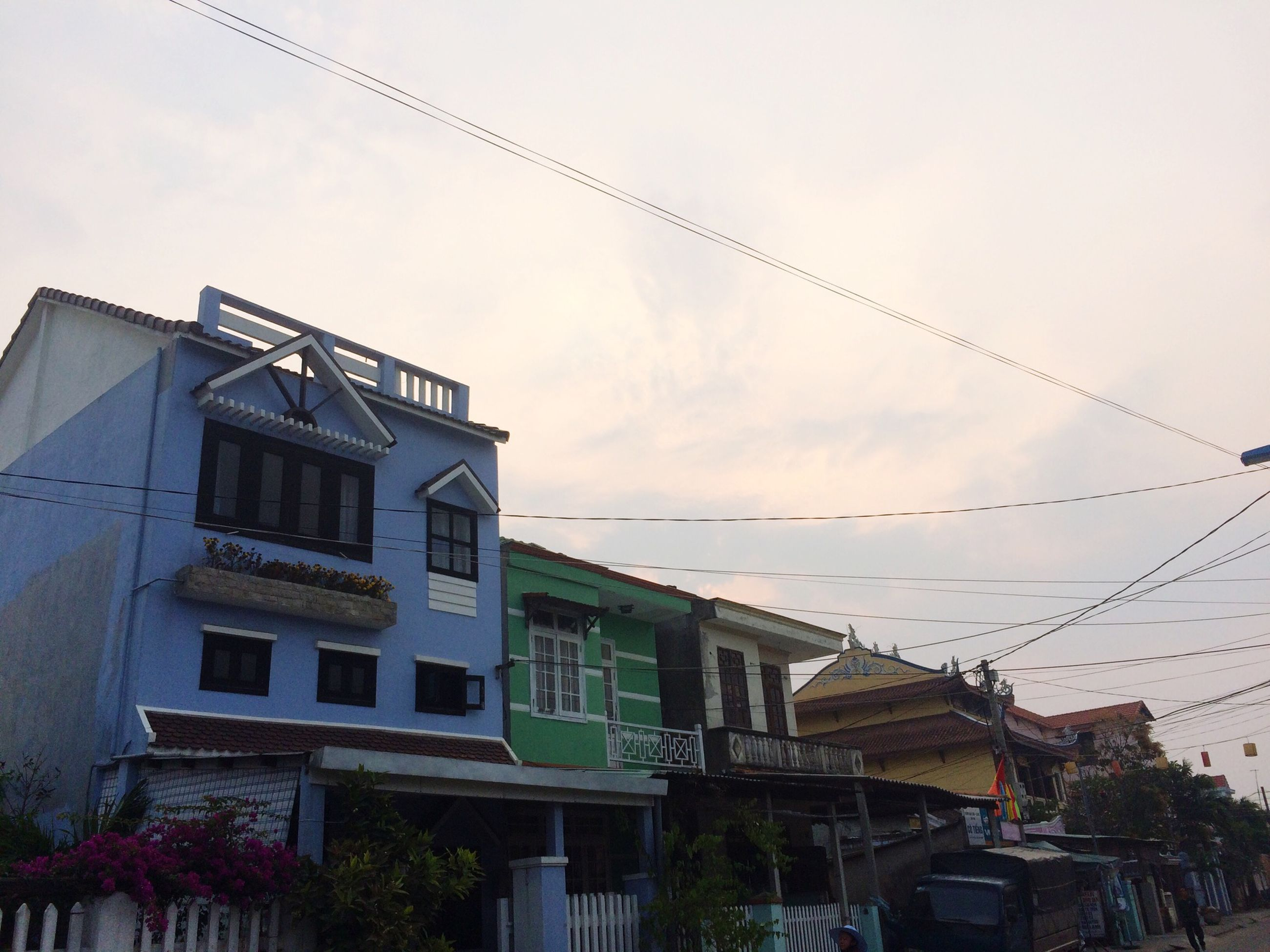 architecture, building exterior, built structure, low angle view, bird, sky, residential building, house, residential structure, building, roof, outdoors, animal themes, day, cable, no people, flying, city, power line, tree