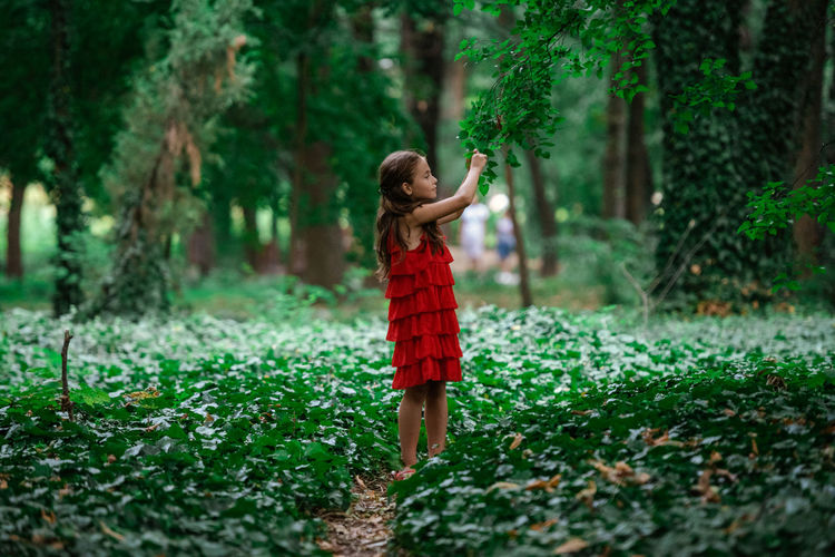 Full length of boy standing in forest