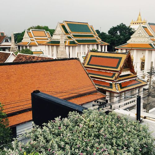 Old town Bangkok Architecture Built Structure Building Exterior Building Roof Plant House Residential District No People Thailand Travel Destinations High Angle View Day Tree Growth Place Of Worship Roof Tile City Outdoors Belief Spirituality