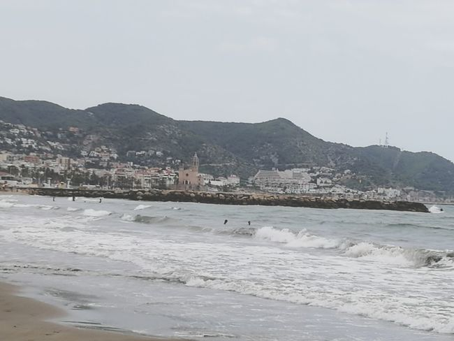 Sitges Barcelona España Mountain Animal Outdoors No People Beach Landscape Winter Sea Day Nature Cold Temperature Animal Themes Mammal Animal Wildlife Water Snow Beauty In Nature Bird Swimming Sky