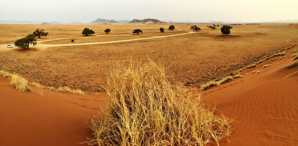Amazing Scenery Sossusvlei Sunset_collection Red Sands Dunes Panoramic Photography Namibia Landscapes With WhiteWall