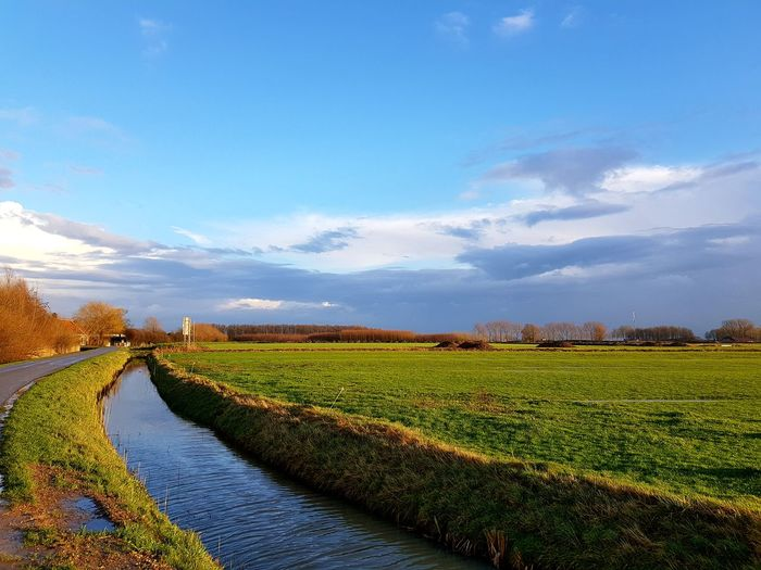 Beautiful colours during the 'golden hour' Hello World Enjoying Life Sunset Sunlight Golden Hour Winter Dutch Green Color Blue Blue Sky Agriculture Field Crop  Landscape Farm Rural Scene Nature Cloud - Sky Scenics Outdoors No People Water Sky Beauty In Nature Day Tranquil Scene