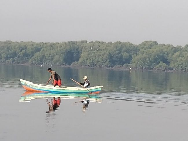 Water Nautical Vessel Transportation Two People Men Leisure Activity Lake Adult Mode Of Transportation Oar People Day Waterfront Nature Adventure Lifestyles Tree Real People Reflection Rowing Outdoors