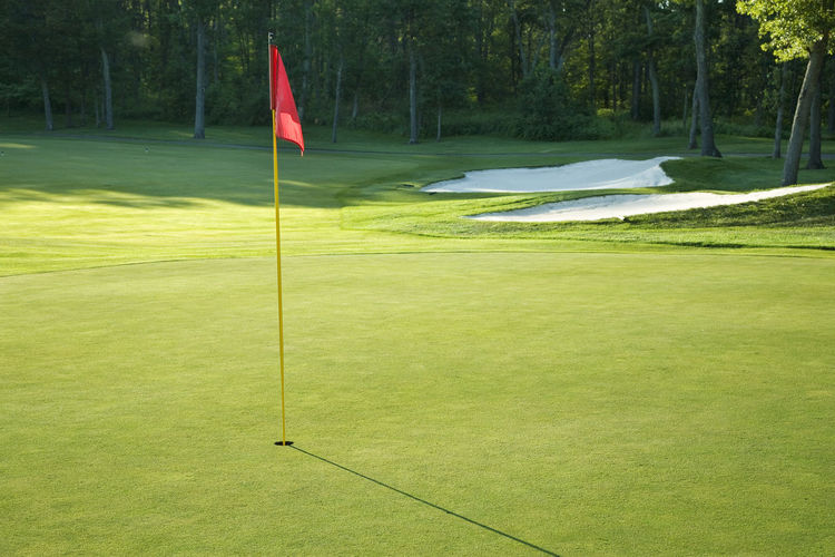 Golf green with red flag in late afternoon sunlight Bunker Copy Space Grass MidWest Minnesota Red Sand Trap Sunlight USA Day Golf Golf Course Golf Flag Grass Hazard Hole Leisure Activity No People Outdoors Putting Green Shadow Sport Tree