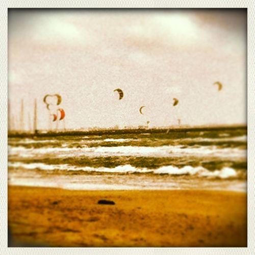 sortie des kite <3