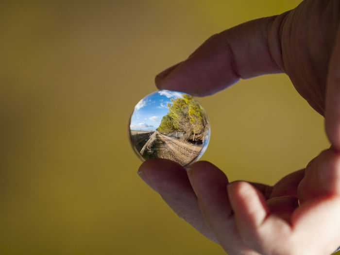 Cropped Hand Holding Crystal Ball With Reflection Of Dirt Road