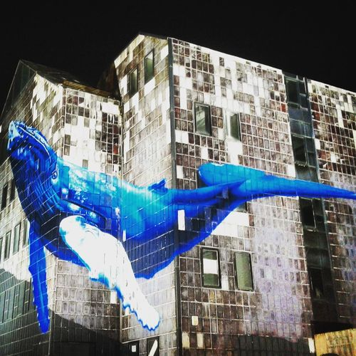 City Graffiti Art Whale Graffiti & Streetart Zagreb Zagreb, Croatia Etien