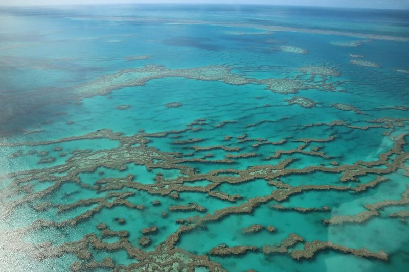 Great Barrier Reef Viewfromabove Sunny