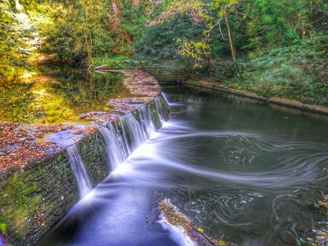 Water Nature Waterfall Beauty In Nature Motion Tree Scenics Outdoors No People Long Exposure Forest Day Long Exposure Shot EyeEm Best Shots EyeEm Selects Silky Water Autumn Stream - Flowing Water Huawei Photography Snapseed WoodLand River P10 Plus Photography Watermill Sky