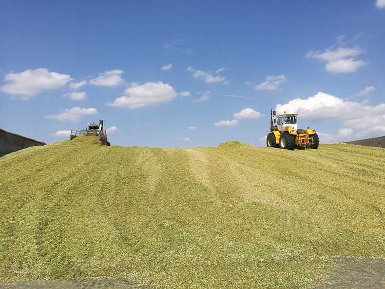 Silage making Agriculture Beauty In Nature Blue Cloud Cloud - Sky Day Green Color Growth Nature No People Non-urban Scene Outdoors Remote Rural Scene Scenics Silage Making Sky Tranquil Scene Tranquility Transportation
